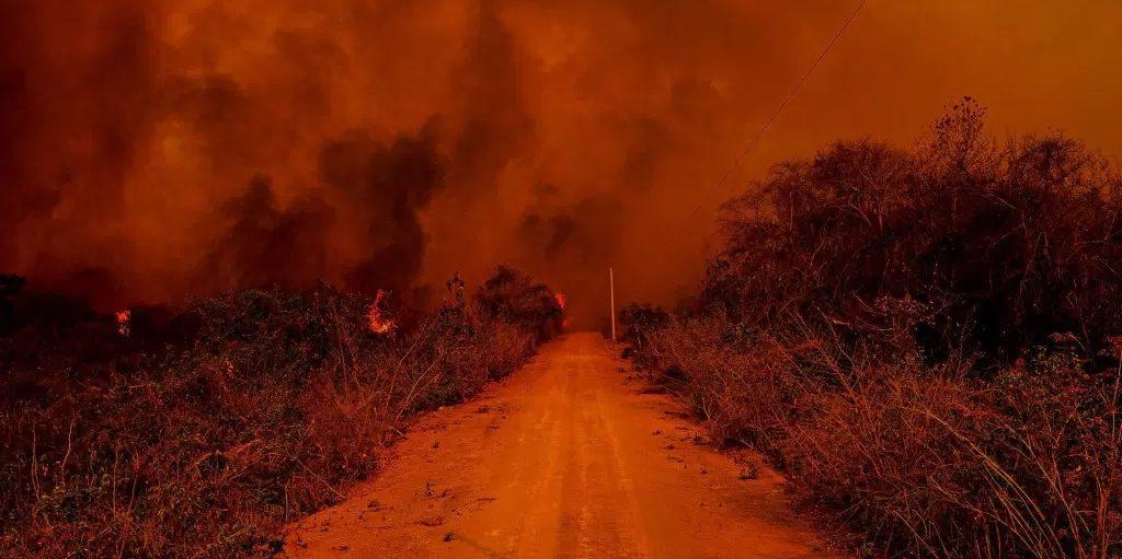 As mãos que queimam o pantanal